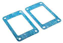 Pair of Exhaust Riser Gaskets