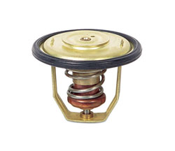 Thermostat Kit Volvo 875781-7