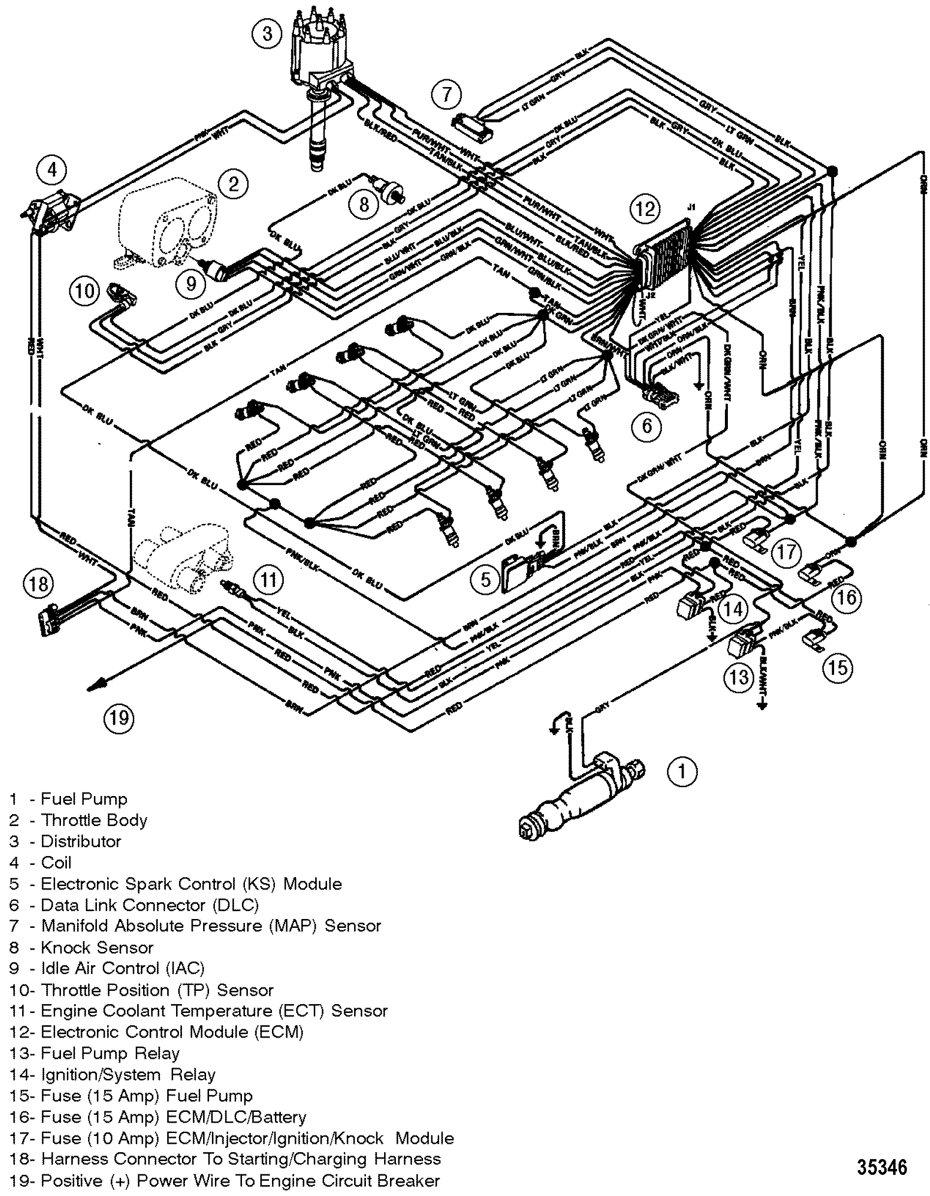 cp performance wiring harness efi GM Throttle Body Wiring Diagram section drawing hover or click to view larger